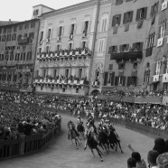 The Palio of Siena Horse Race